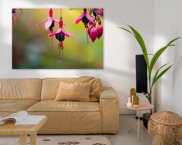 rosa und lila Anhänger von Tania Perneel