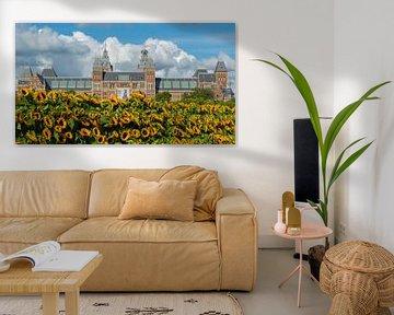 """Rijks Museum in het """"zonnetje""""gezet. van Peter Valentijn"""