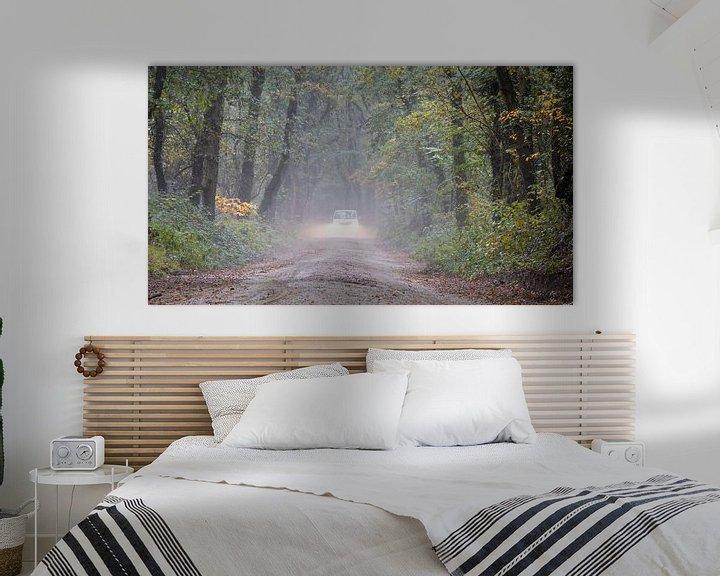 Beispiel: Gewagte Autofahrt in den Wäldern von Anjo ten Kate