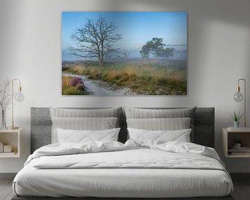 Die Kalmthoutse Heide im Morgennebel von Leontine van der Stouw