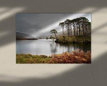 Eilean Na Moine (eilandje) Glencoe Schotland van Ab Wubben