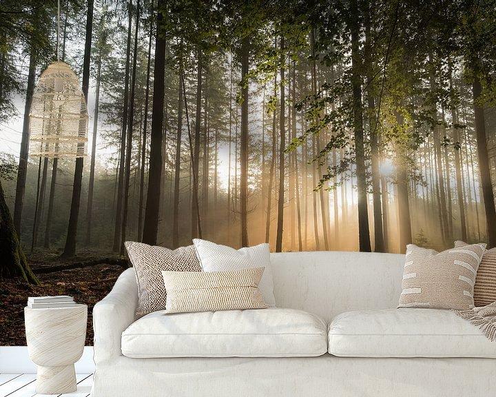Sfeerimpressie behang: Mystiek bos met zonneharpen van Moetwil en van Dijk - Fotografie