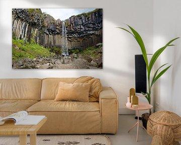 Islande, chute d'eau de Svartifoss dans le parc national de Skaftafell sur Discover Dutch Nature