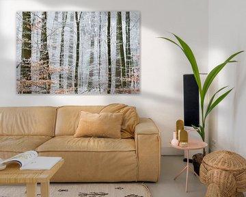 Winterwonderland van Laura Vink