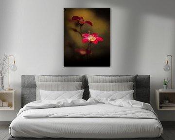 Rote Blüten von Marcus Lanz