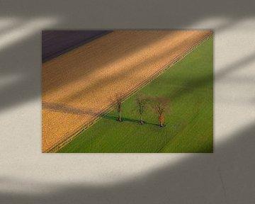 Niederländische Polderlandschaft aus der Luft von Arina Keijzer