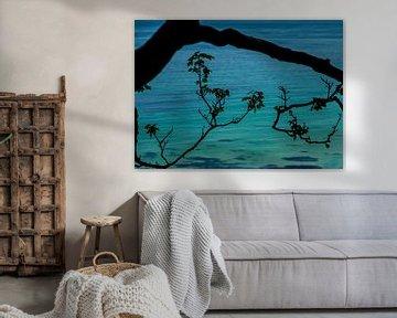Boomtak voor turquoise zee van Arina Keijzer