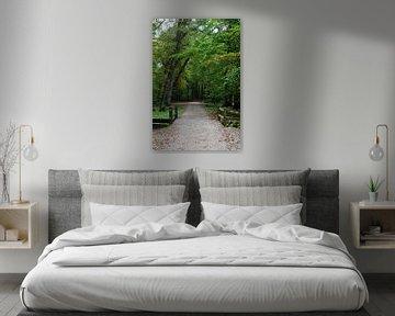 Een bospad met een brug van Gerard de Zwaan