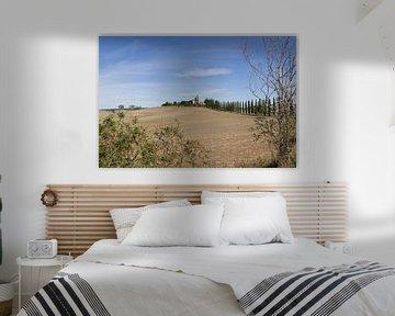 Toscaans Landschap met cipressen - Landschapsfotografie