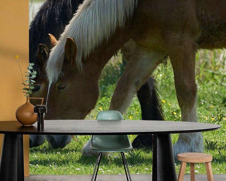 Impression: Deux chevaux au pâturage en gros plan sur Geert van Kuyck