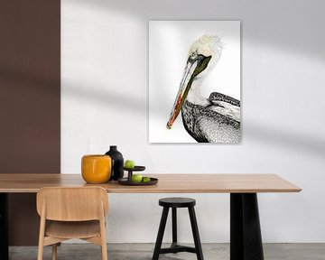 Portrait eines Pelikans in farbigem Bleistift von Michelle Coppiens