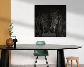 Paarden, 2 paarden in diverse kleurschakeringen van Gert Hilbink