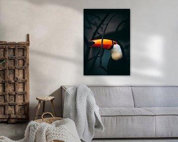Tukanisches Porträt von Pim Haring