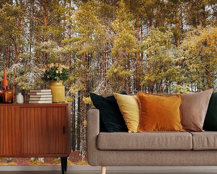 Beispiel fototapete: Bäume im Herbst von Thea.Photo