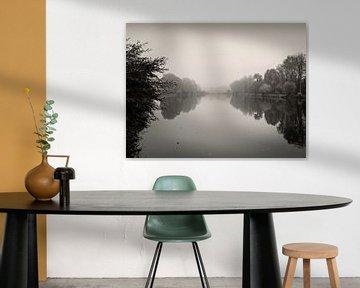 Rustige rivier van Lena Weisbek