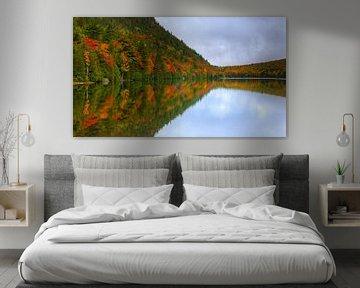 Bubble Pond, Acadia National Park, Maine van Henk Meijer Photography