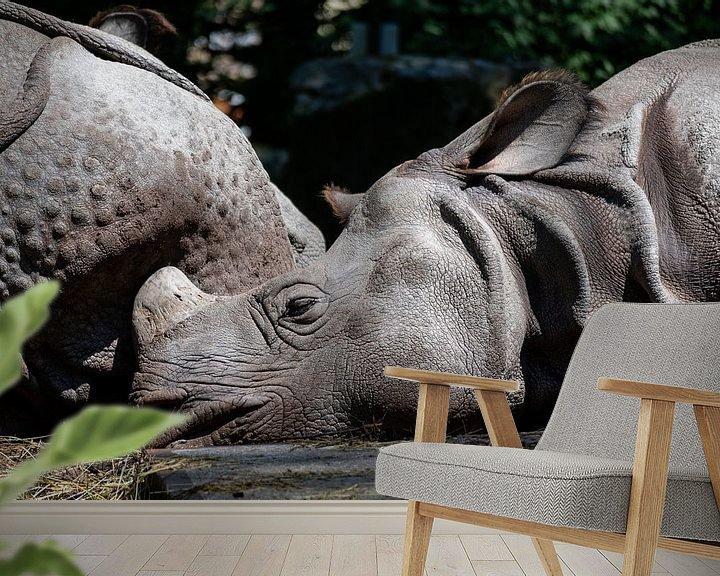 Beispiel fototapete: Schlafende Riesen von Lianne van Dijk