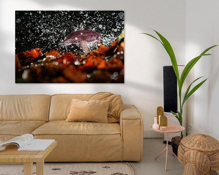 Sfeerimpressie: Spetterende regen op een paddenstoel van Fotografiecor .nl