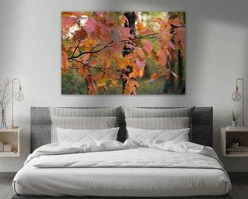 oranje gebladerte van Tania Perneel