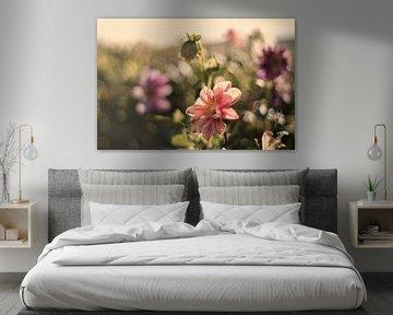 Pastelkleurige bloemen von Tammo Strijker