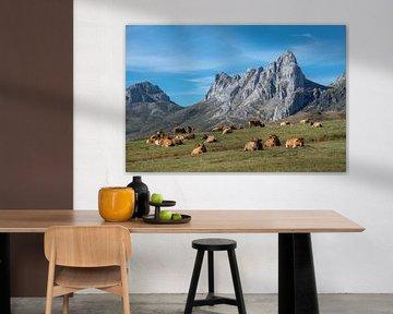 Ruhestand von Kühen in den nordspanischen Bergen von Harrie Muis