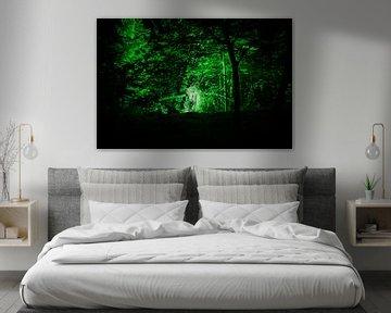Een stukje magie, verborgen aan de rand van Kralingse Bos van Tjeerd Kruse