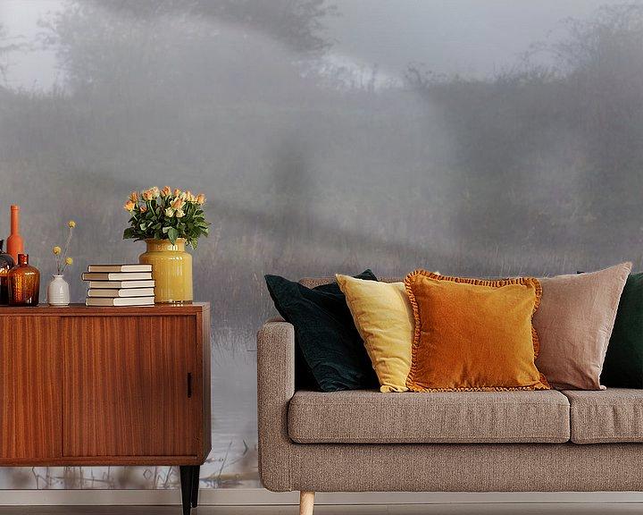 Beispiel fototapete: Schwan im Nebel von Tania Perneel