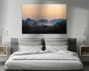 blauwe uur in de mist van Tania Perneel