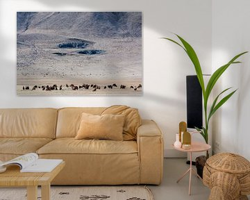 Kamelen in Mongolie van Nanda Bussers