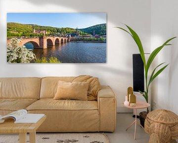 Oude brug en het kasteel in Heidelberg van Werner Dieterich