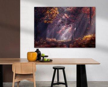 Zonnestralen in het herfst bos van Rob Visser