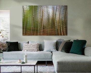 Image Simson avec exposition multiple. sur Anne Ponsen