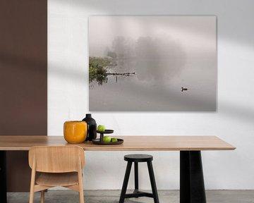 Drijven in de mist van Lena Weisbek