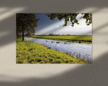 Holländische Auenlandschaft von Déwy de Wit