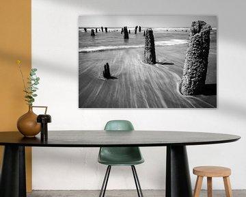 Neskowin Strand Oregon von Charlotte Bakker