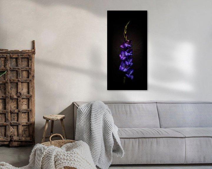 Beispiel: Tiefviolette Eisenhutblume vor dunklem Hintergrund. von MICHEL WETTSTEIN
