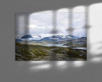 Jotunheimen National Park Noorwegen van Dennis van Amstel