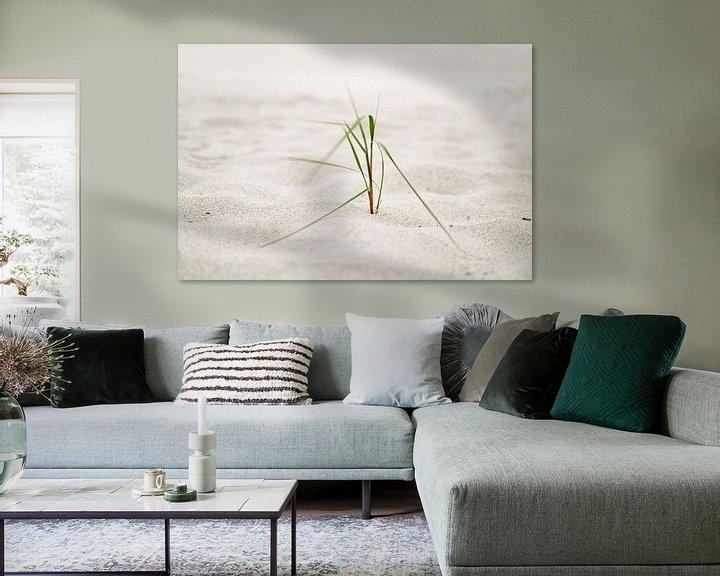 Sfeerimpressie: Strandgras in de zeewind van Ralf Lehmann