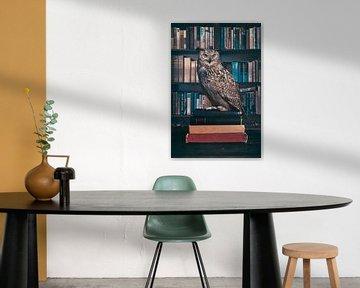 The old wise owl van Elianne van Turennout