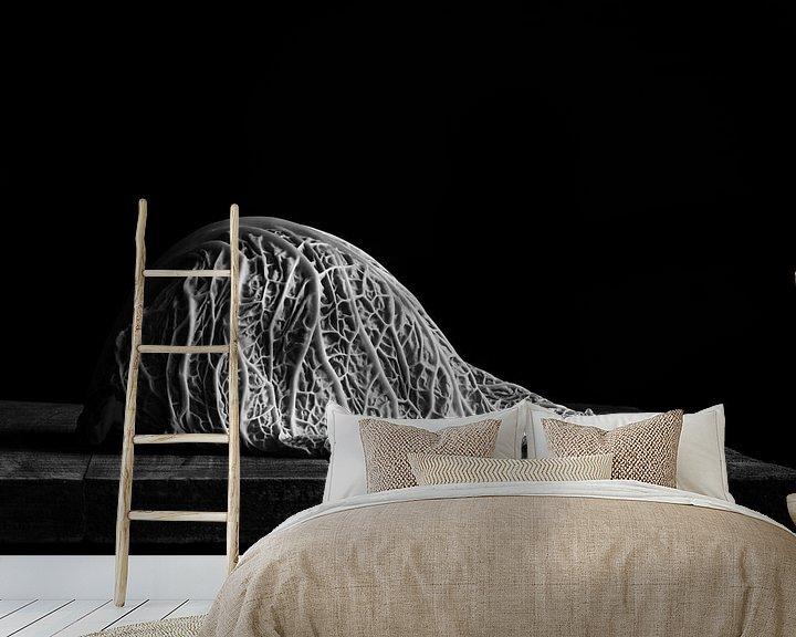 Sfeerimpressie behang: Savooiekool, zwart wit van Mariska Vereijken
