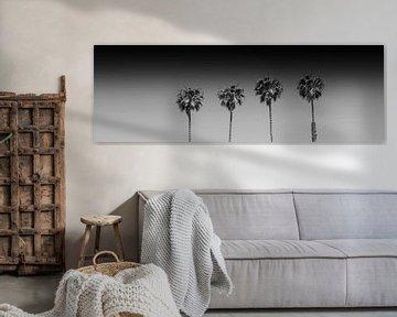 Sommeridylle mit Palmen | monochrom von Melanie Viola