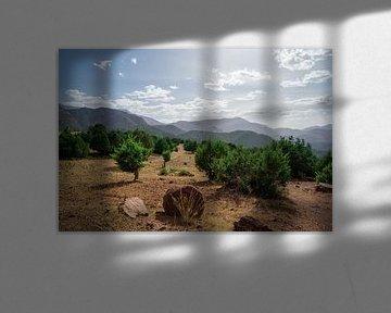 Atlasgebergte in Marokko van Eline Chiara