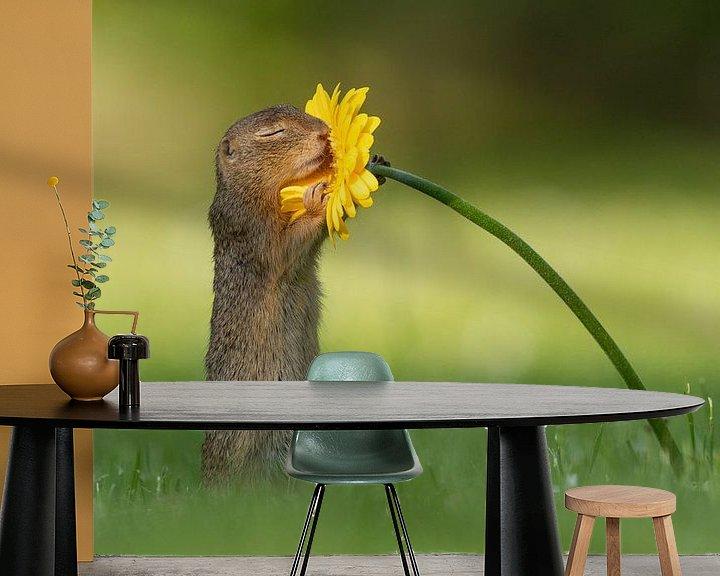 Sfeerimpressie behang: Eekhoorn ruikt aan bloem van Dick van Duijn