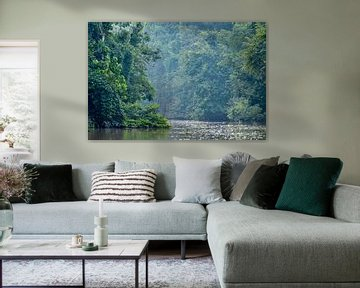 Rivier in regenwoud in Borneo van Martin Jansen