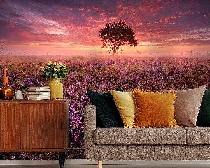 Sfeerimpressie behang: Roze zonsopkomst op de Kalmthoutse heide van Ellen van den Doel