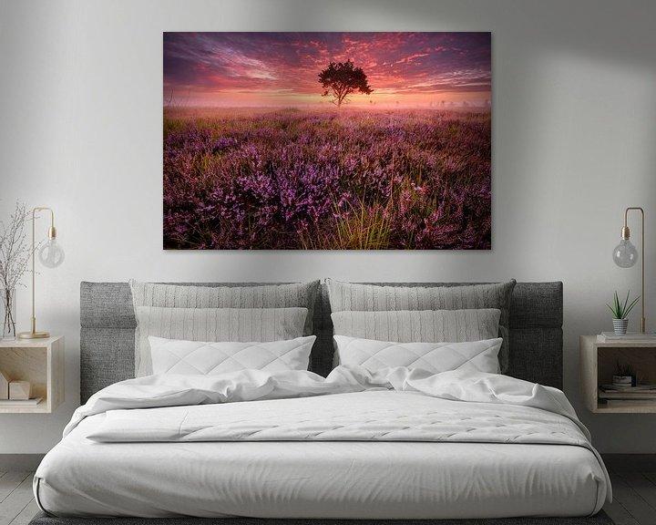 Sfeerimpressie: Roze zonsopkomst op de Kalmthoutse heide van Ellen van den Doel