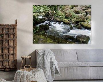 Irreler rivier van ProPhoto Pictures