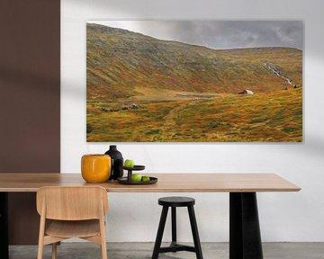 IJsland 14 van Henk Langerak