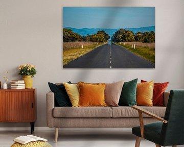 Roadtrip van Ruben Swart