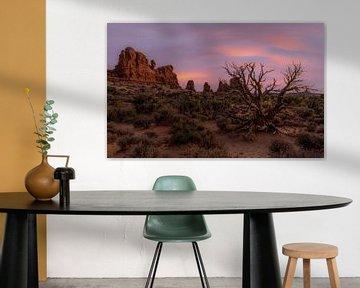 Sunset Canyonlands van Mario Calma